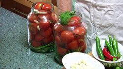 solenye-pomidory-bystryj-zasol_2