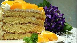 biskvitnyj-tort-abrikos_14
