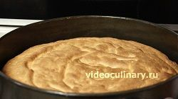 biskvitnyj-tort-abrikos_5