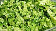 zeleni-salat_4