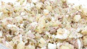 kartofelnyj-salat-s-tuntsom_5