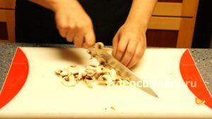 omlet-gribi_1