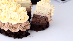 tort-tri-shokolada-biskvitnyj-13